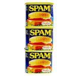 spam-rgura3